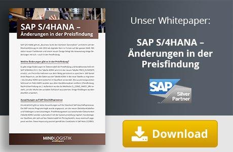 Unser E-Book zum Thema SAP S/4HANA Änderungen in der Preisfindung